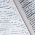 Активисты в Караганде против открытия кабинета русского языка. Они связывают его с фондом Никонова
