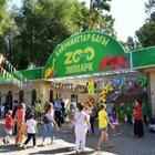 Стали известны причины гибели животных в зоопарке Алматы