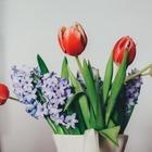 Цветочный магазин бесплатно раздавал букеты к 1 сентября и спровоцировал давку