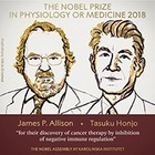Нобелевскую премию по медицине и физиологии вручили за исследование рака