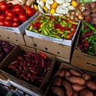 Казахстан принял решение запретить экспорт ряда продовольственных товаров
