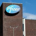 23 пожилых человека скончались после вакцинации препаратом от Pfizer