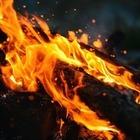 31 природный пожар случился в Казахстане за четыре дня