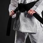 Мировые каратисты проведут тренировки онлайн