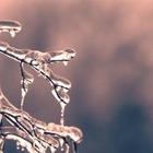 В начале ноябрь будет теплым, затем сильно похолодает