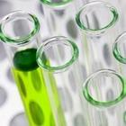 Вакцину от коронавируса начали тестировать на животных