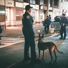 Полиция столицы задержала группу наркодилеров