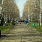 Суд по иску о реконструкции парка «Южный» начался в Алматы