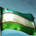 В Ташкенте с улиц похитили 2 тысячи флагов