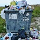 За неделю в Министерство экологии поступило 376 жалоб на стихийные свалки