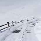 Украинец выдумал убийство, чтобы заставить полицию очистить дорогу к его дому от снега