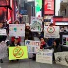 В Нью-Йорке прошла акция в защиту Кок-Жайляу