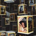 National Geographic запустил бесплатную образовательную платформу для детей всех возрастов