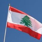 Ливанские власти прокомментировали драку рабочих в Казахстане