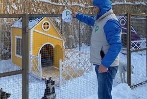 PetVille: Что происходит в деревне для собак, основатели которой собирают 128 миллионов тенге