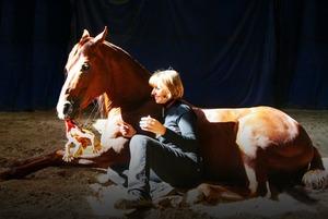 Ученый Елена Молчанова — о том, как научить лошадей читать, а людей — уважать живых существ