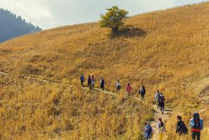 По тропам счастья: Кто и зачем облагораживает маршруты Заилийского Алатау
