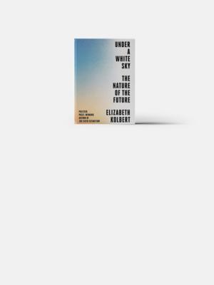 Что читает Билл Гейтс: 5 книг на лето
