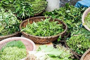 Вкусная трава: 3 блюда на лето со щавелем