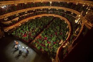 Судьба блокпостов в Алматы, концерт для растений и Lego «Один дома»